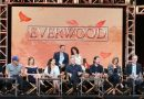 Everwood TCA Reunion – Where are the Cast Now? Could it Return?