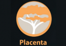 Install Placenta Addon for Kodi