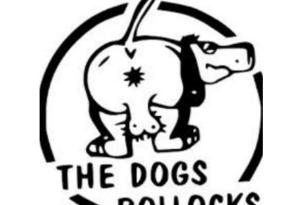 Install The Dogs Bollocks Addon for Kodi